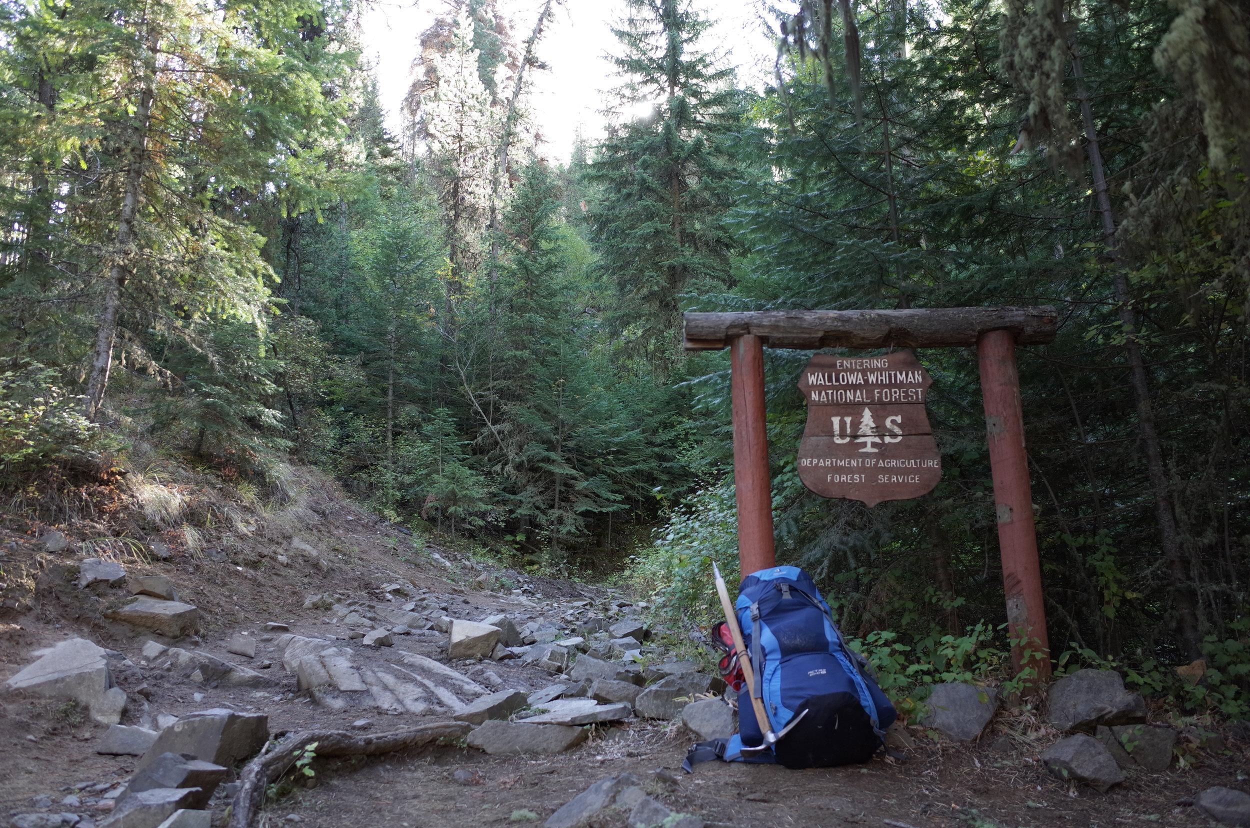 West Fork Wallowa River trail