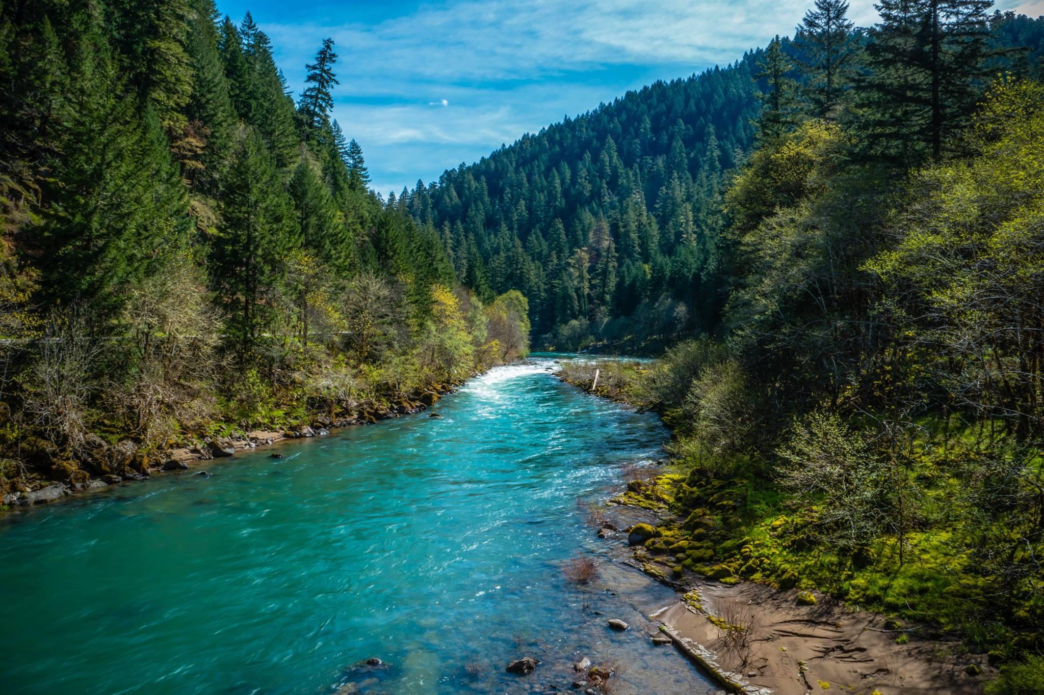 North Umpqua River. Photo by Renee Seeker.