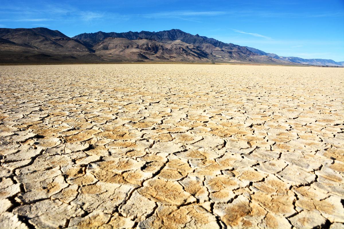 Marvel at the vastness of the Alvord Desert.
