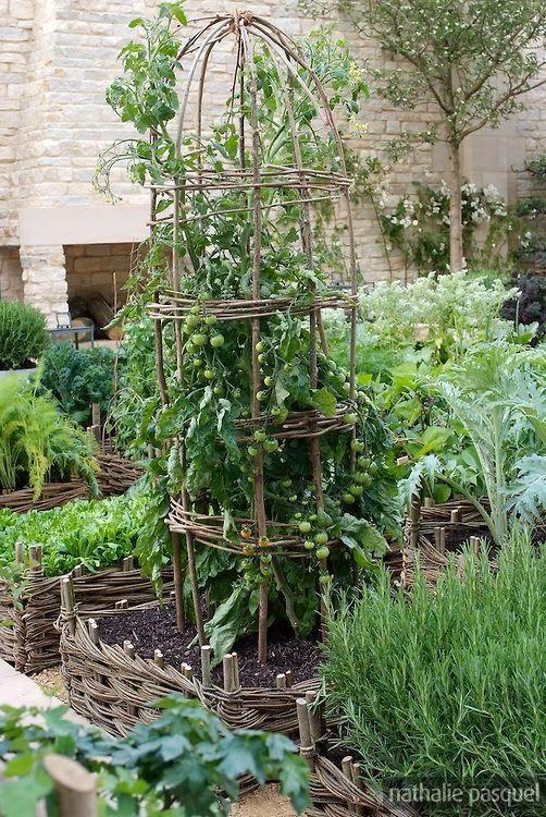 The Kitchen Garden -
