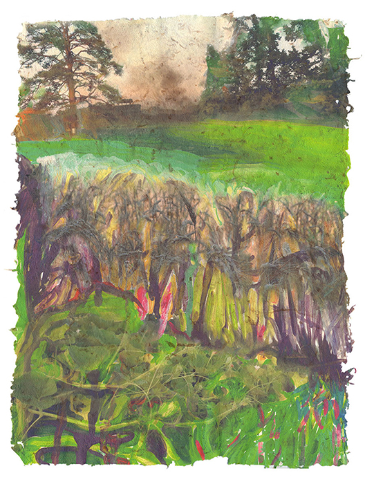 Back Fields, 2015, Digital print on homegrown and homemade cotton paper, 18 x 24 inches