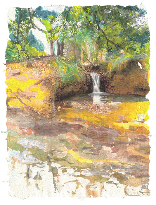 Forest Waterfall, 2015, Digital print on homegrown and homemade cotton paper, 18 x 24 inches