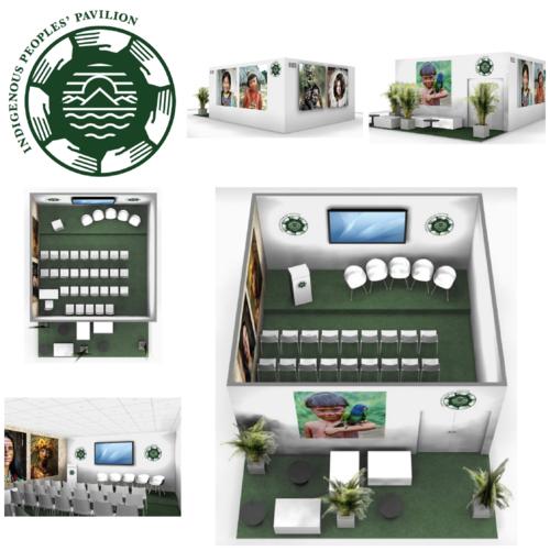 IIPFCC Pavilion COP23 virtual