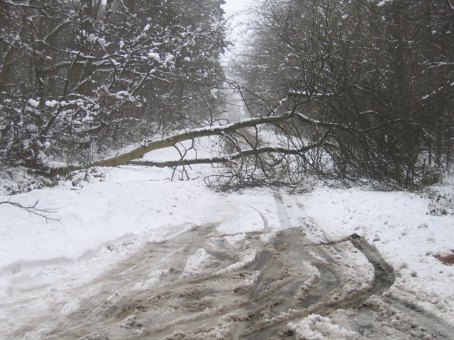 snow cavan drung school closed church larah lavey redhills
