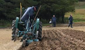 ploughing.jpg