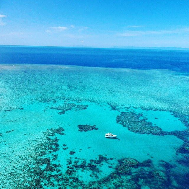 Welcome onboard #mvmonsoon ... where your every wish is our command 💙🐳🏝 #mvmonsoonportdouglas #privatecharter #thisisqueensland #explorequeensland #portdouglas #daycharter #fishing #snorkelling #diving #dive #exploreportdouglas #portdouglasdaintree #portdouglaslife #portdouglasmagazine #destinationwedding #reef #gbr #greatbarrierreef
