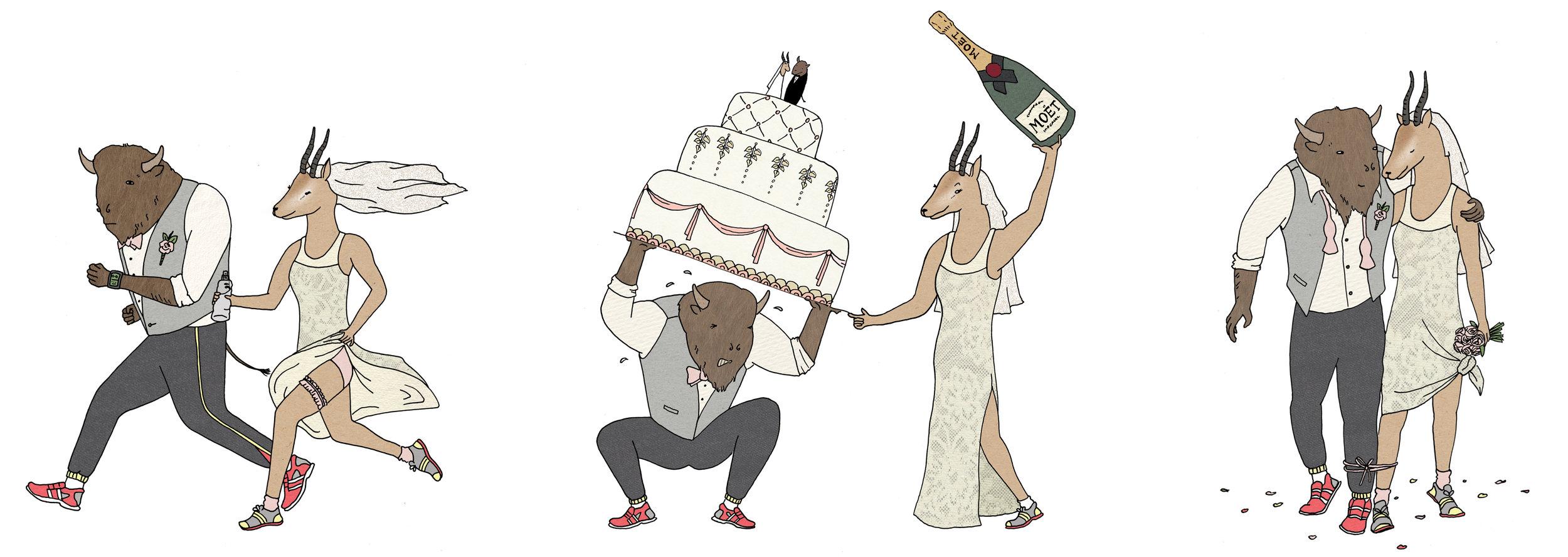 wilson wedding.jpg