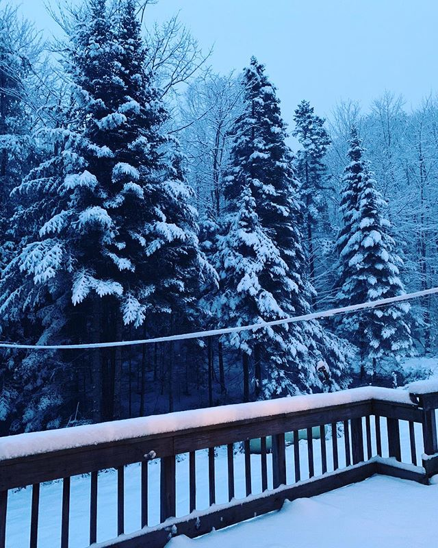 My mom just sent a photo of the view at my parent's house this morning 😵❄️ . . . #mollywinterstewart #amplifiedlife #keepitpositive #broadway #performer #artist #brooklyn #nyc #snow #firstsnow #vermont #rural #05821