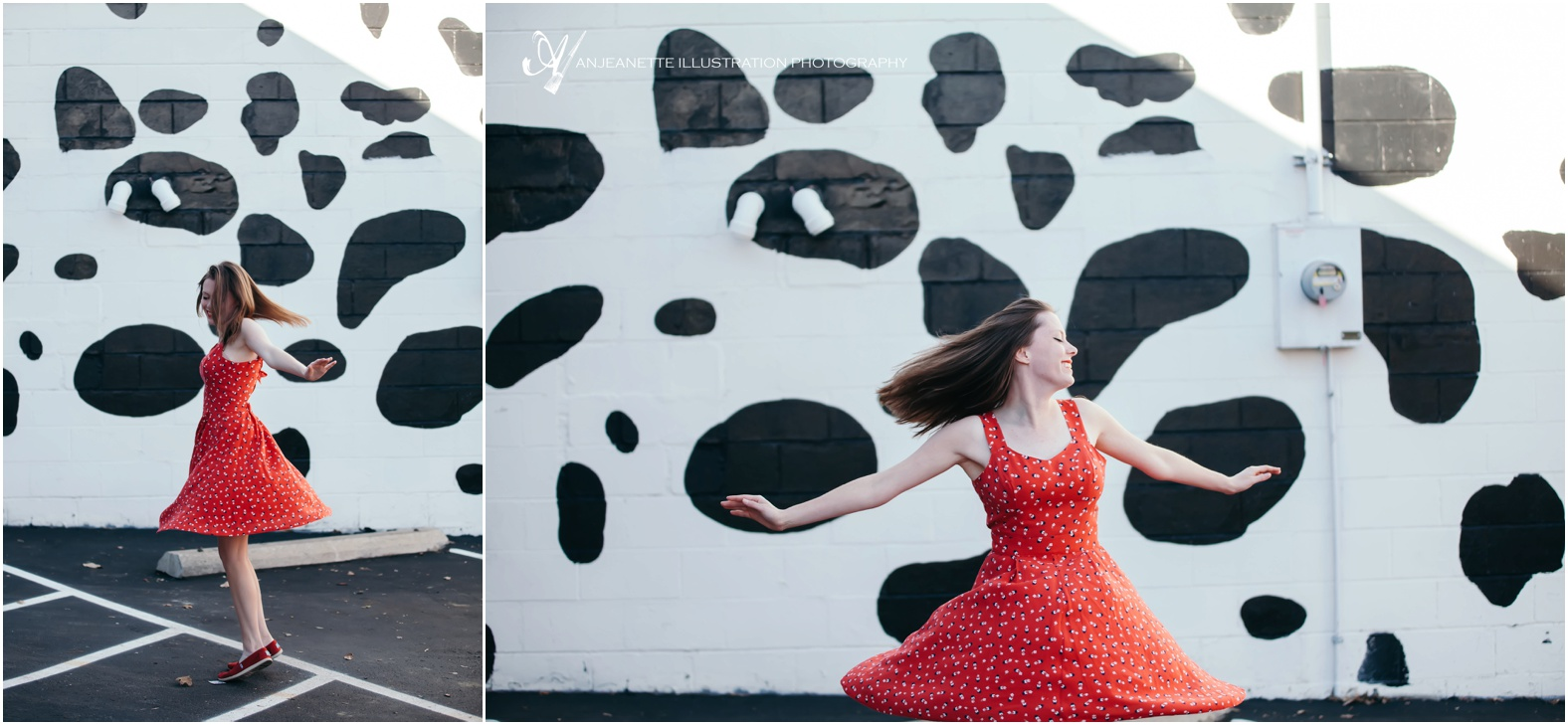 Hendersonville Tn Senior Pictures by Anjeanette Illustration Photography