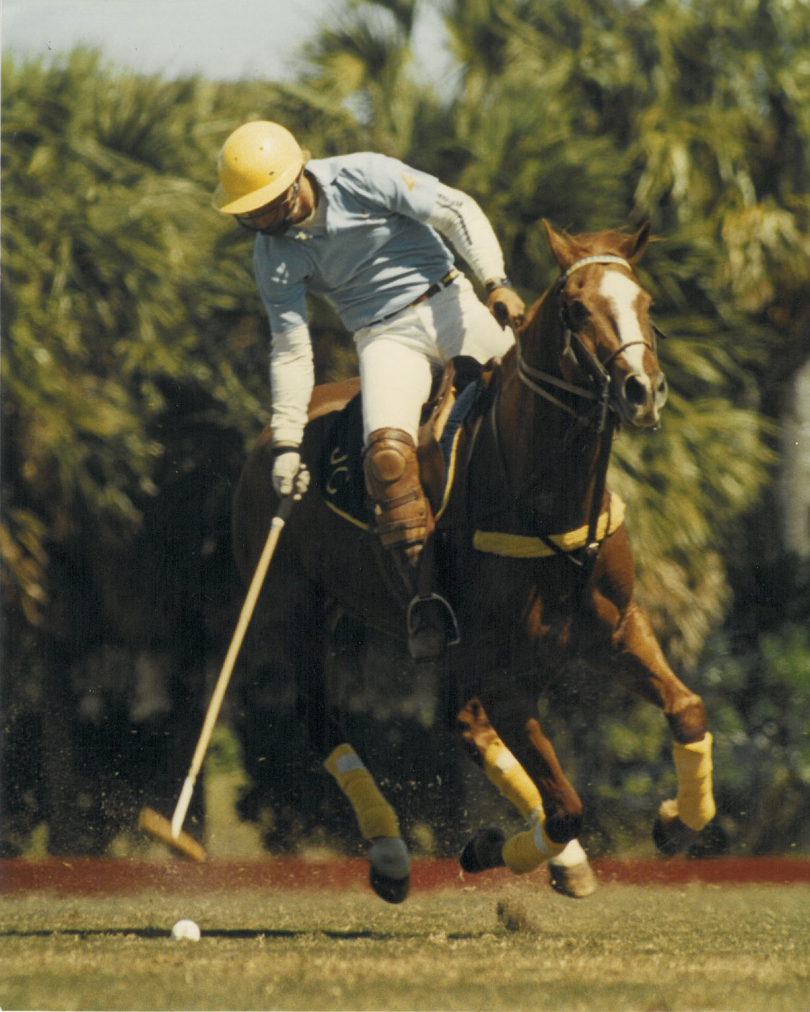 "Joey Riding one of his favorite polo horses, ""Shogun"", playing the 26 goal Gold cup"