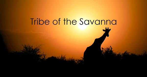 tribe of the savanna.jpg
