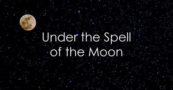 Under the spell of the moon.jpg
