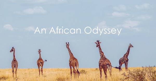 An African Odyssey.jpg