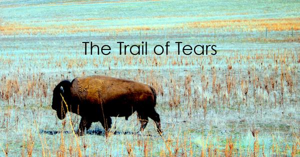The Trail of Tears.jpg