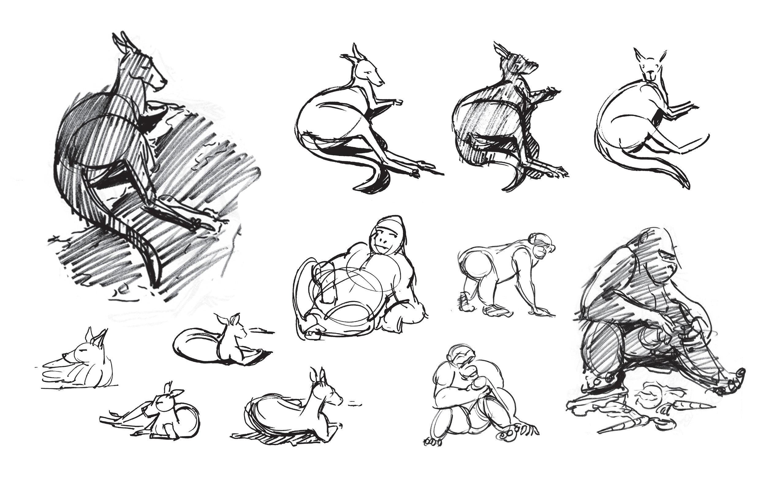 Zoo Sketches 01.jpg