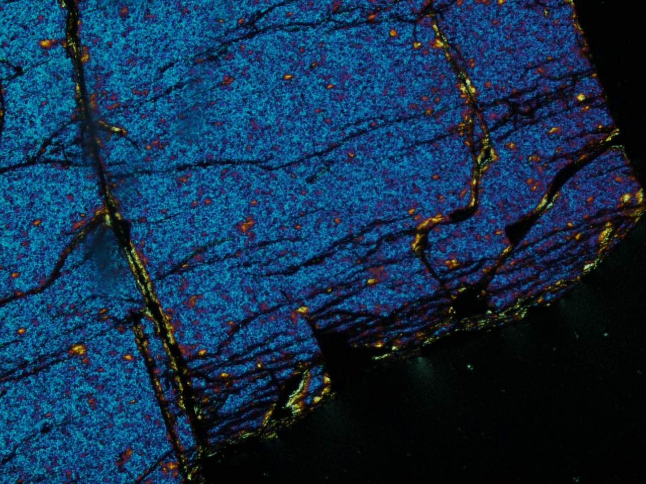 Another picture of a pallasite meteorite thin section! Look at those fractures!!! Credit: Caitlin Ahrens.