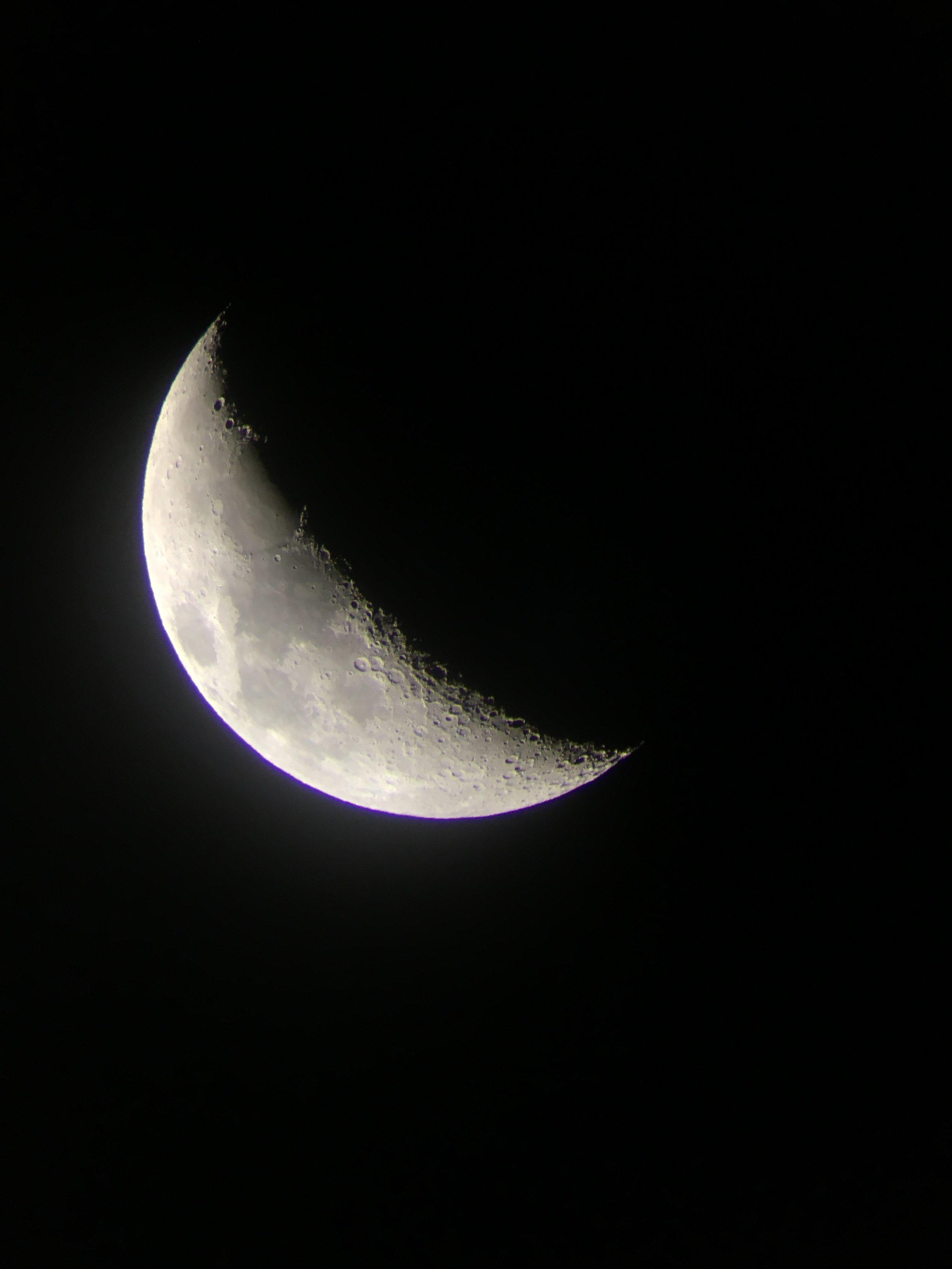Moon-on-Dickson-1.jpg