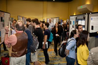 One of the rows of people and posters during the Tuesday Poster Night Session. Credit: LPSC