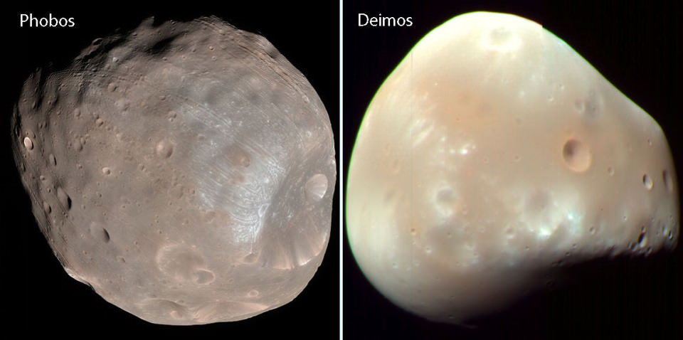 Phobos (left) and Deimos (right). Notice how differently colored they are! Image credit: NASA