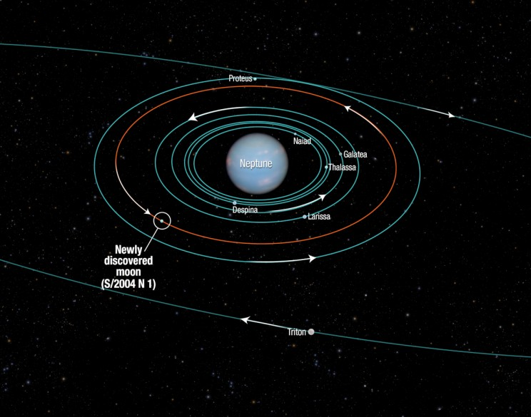Satellite orbits around Neptune with Hippocamp circled. Image credit: NASA