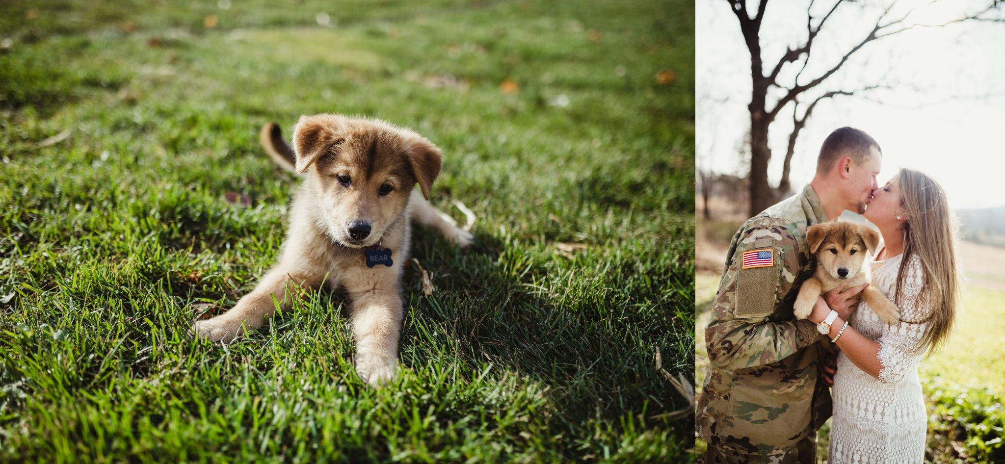 german shepherd puppy engagement photos.jpg