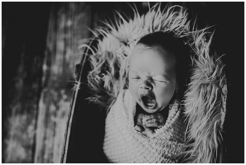 black and white newborn photography kayla e photography madison wi.jpg