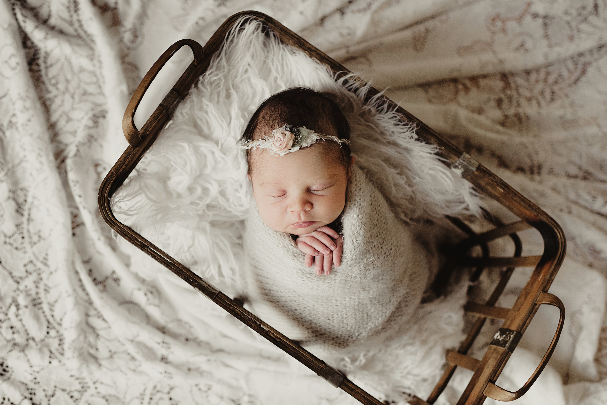 Mini Newborn Session - 3 styled setsphotos of just baby10 digital imagesonline gallery + print release