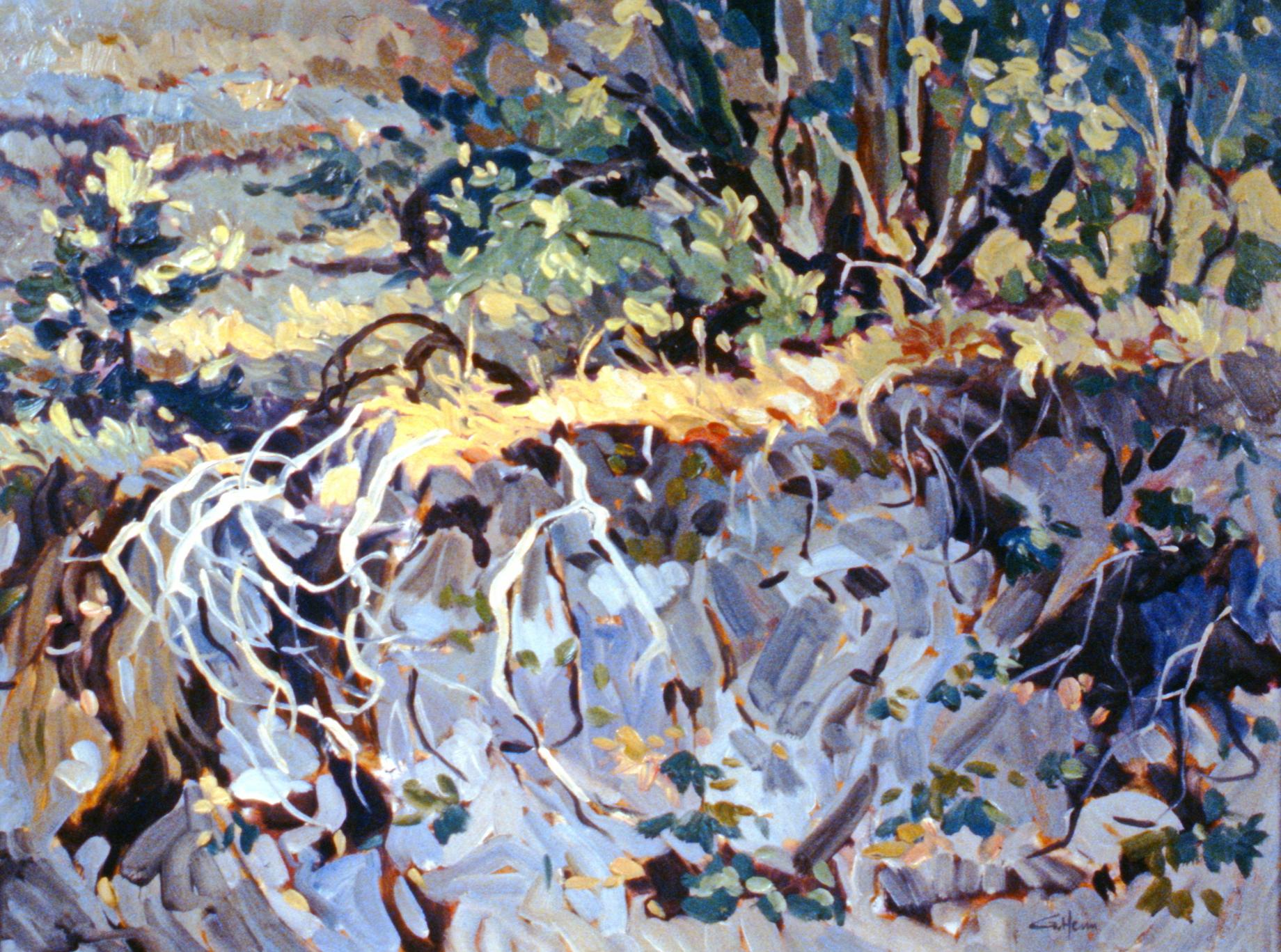 Sun Flecks , 1980, Guenter Heim, oil on panel, 61 x 45.7 cm, 1981.03.01. Gift of the artist.