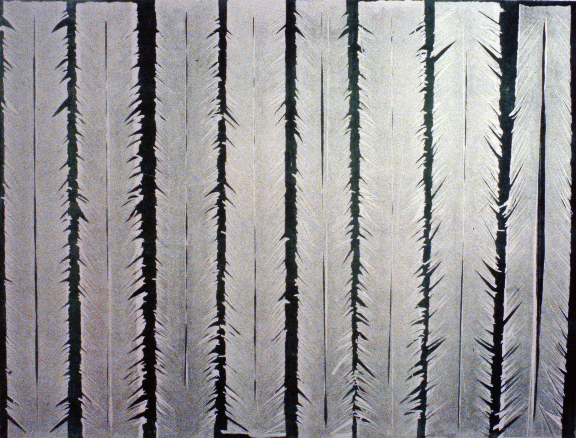 From the Forest III , 1980 , Evelyn Armstrong,serigraph with relief, edition 7/8, 81.3 x 61 cm,1982.02.01. Gift of Ann-Charlotte Bergland.