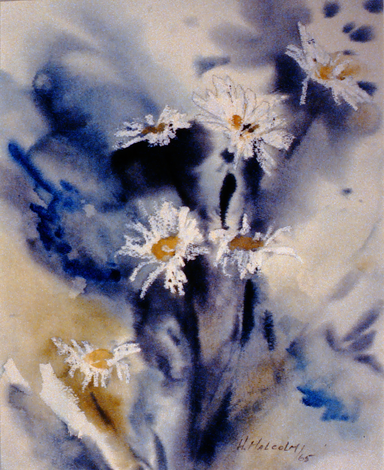 Dancing Daisies , 1965, Hazel Malcolm, watercolour on paper, 49 x 38 cm, 1987.01.03. Gift of Mrs. Ernestine Lamoureux.