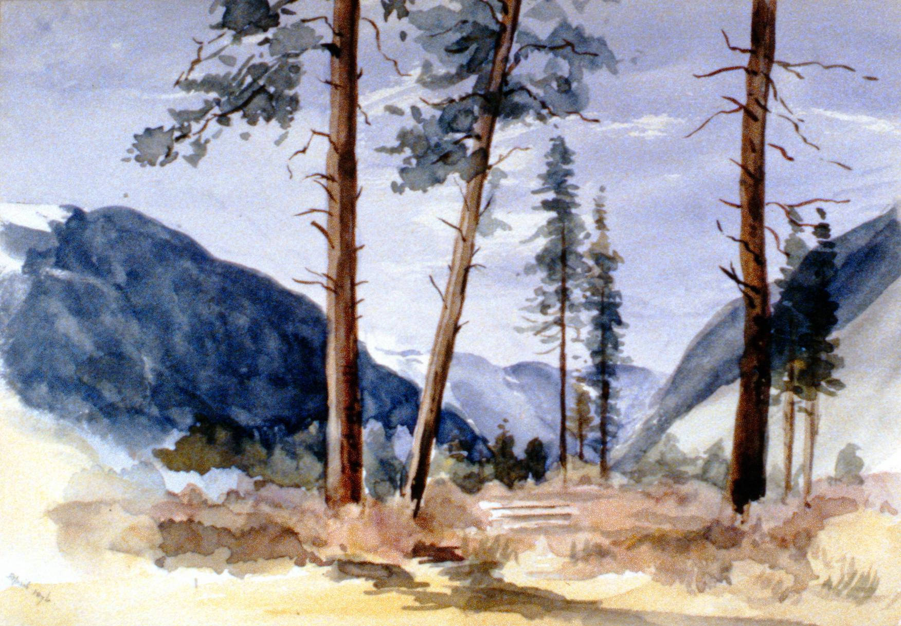 Untitled (Three Trees in Hedley), 1896, Julia Bullock-Webster,watercolour on paper, 22.5 x 32.5 cm,1983.02.09. Gift of Mrs. Barbara Steel.