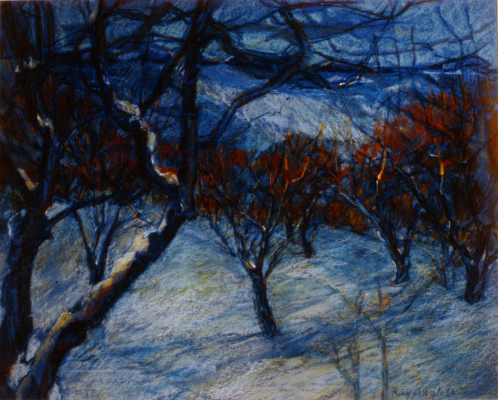 March Snow, Orchard Series #15 , 1991-93, Kay Angliss, oil pastel over silkscreen, 41 1/2 x 52 cm, 1994.08.02