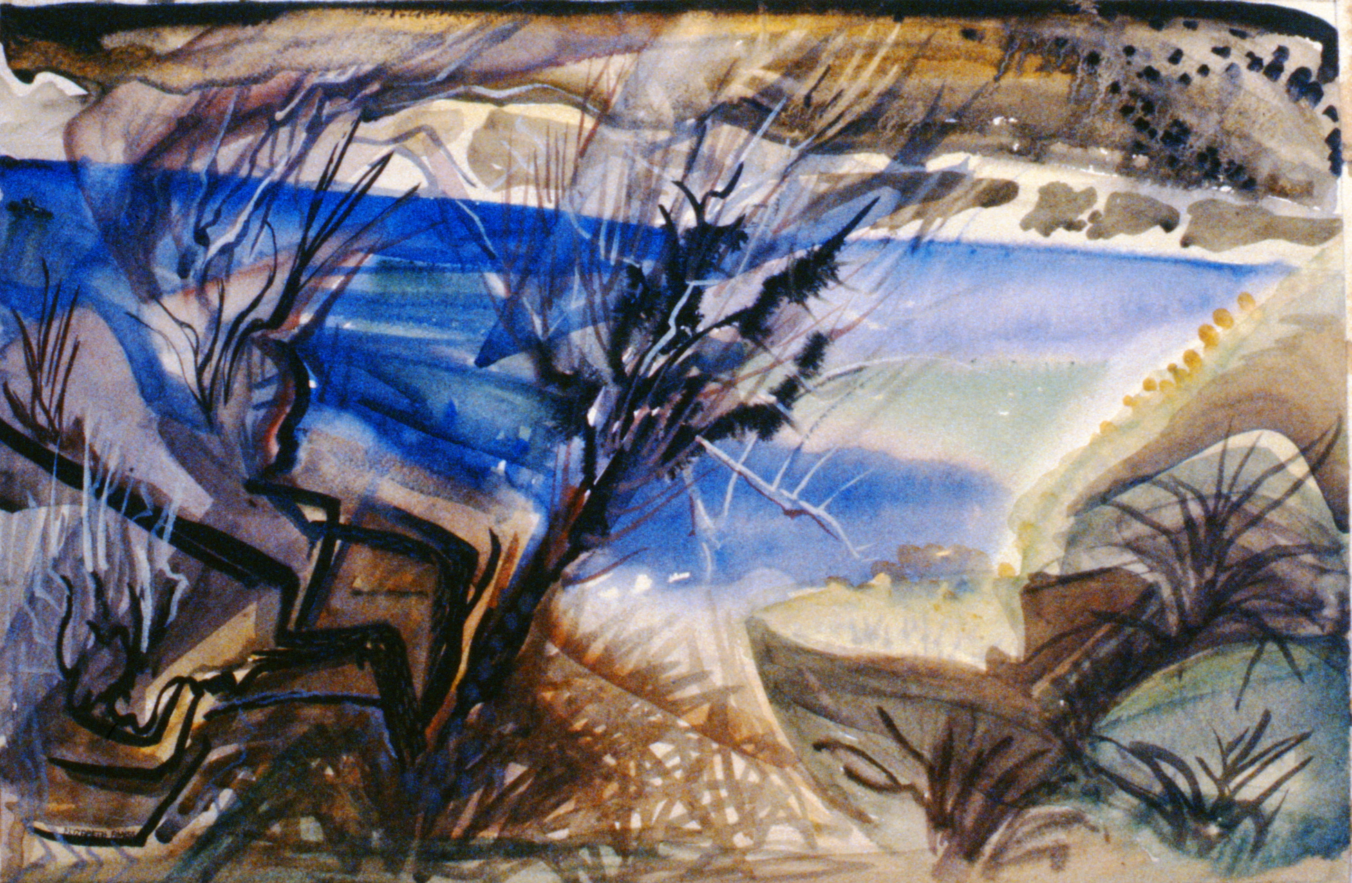 Greasewood , c.1947, Elizabeth Amess, watercolour 35.5 x 54cm, 1995.10.04
