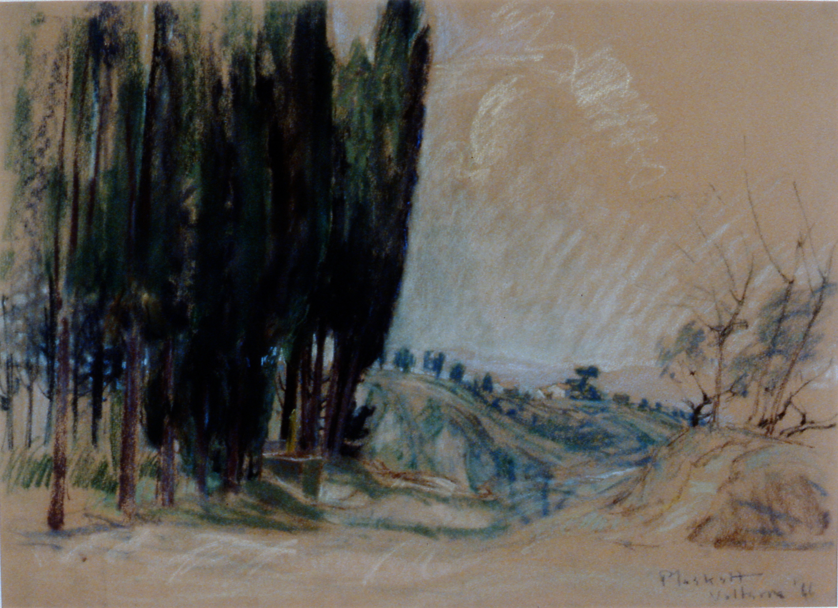 Road Past the Cyprus , 1966, Joseph Plaskett, pastel on beige paper, 50 cm x 65 cm, 1998.03.02, gift of Arthur E. Lock