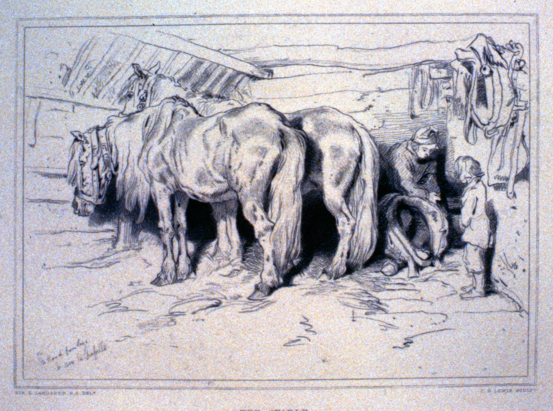 The Stable c. late 19th Century, Charles G. Lewis, steel engraving, 18.7 cm x 25.7 cm, 1996.08.04, gift of Yvonne Adams