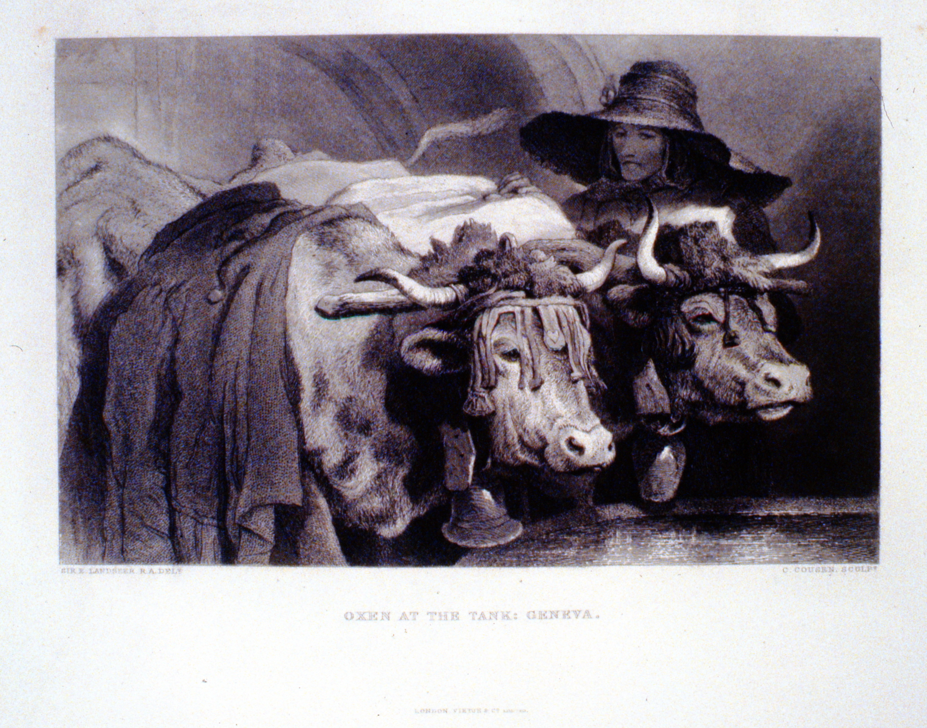 Oxen at the Tank: Geneva ,c. late 19th Century, C. Cousen, steel engraving, 15.5 cm x 24.8 cm, 1996.08.08, gift of Yvonne Adams