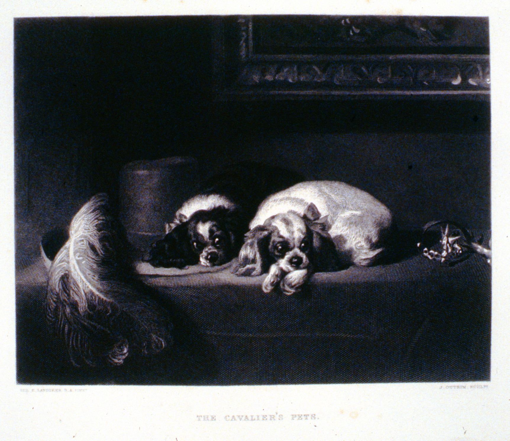 The Cavalier's Pets , c. late 19th Century, J. Outrim, steel engraving, 18.5 cm x 24 cm, 1996.08.09, gift of Yvonne Adams
