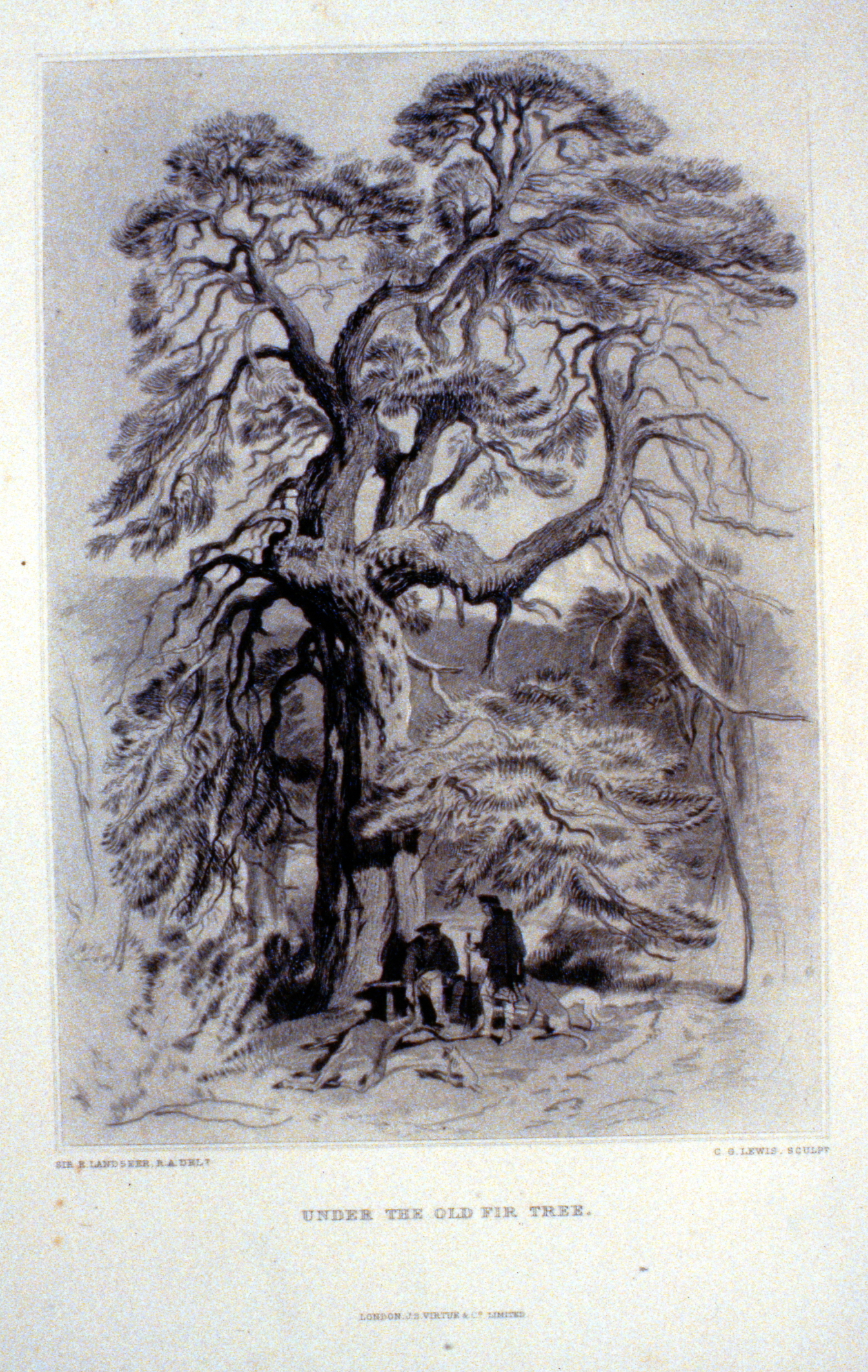 Under the Old Fir-Tree , c. late 19th Century, Charles G. Lewis, steel engraving, 25 cm x 18 cm, 1996.08.15, gift of Yvonne Adams