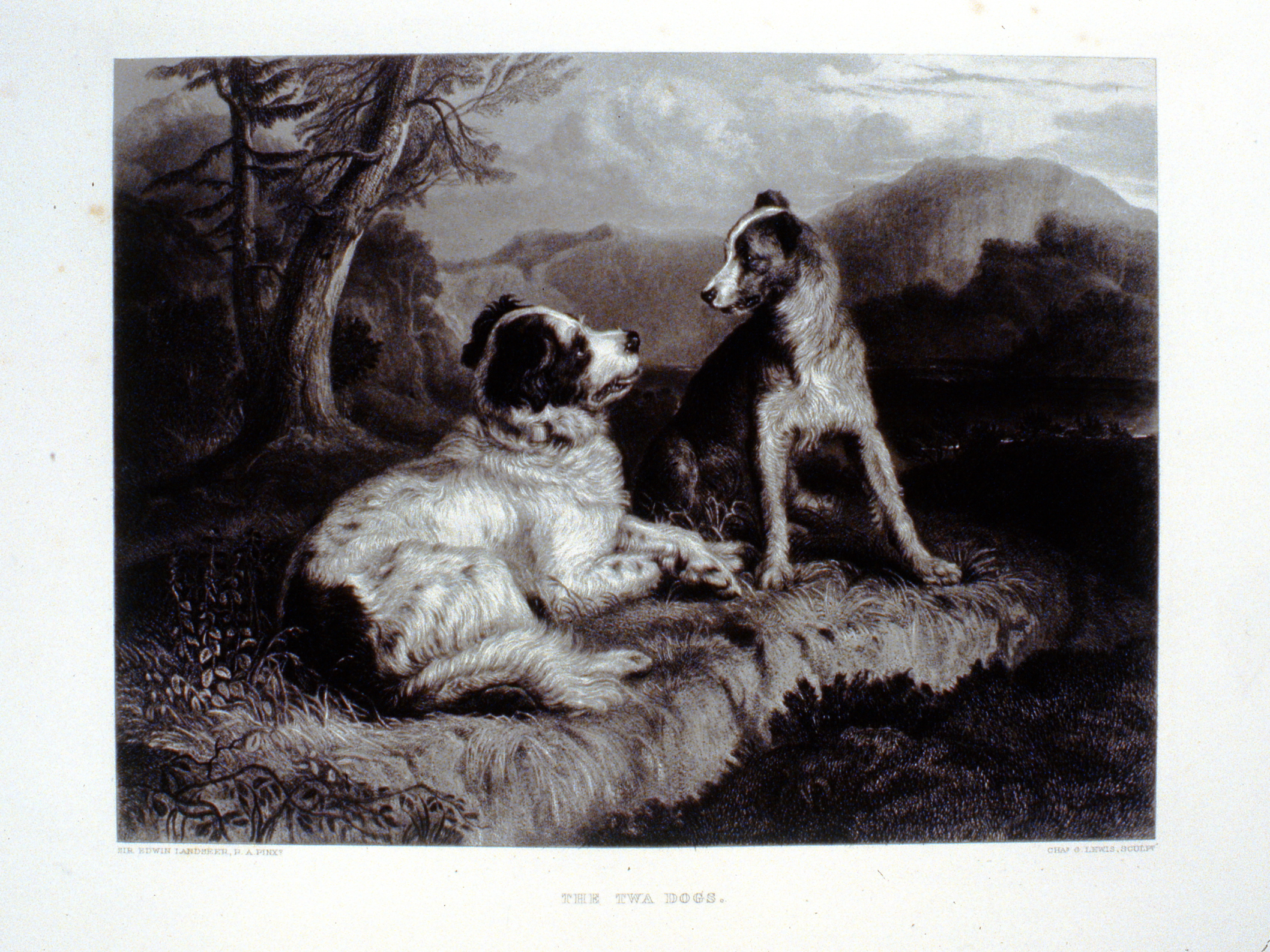 The Two Dogs , c. late 19th Century, Charles G. Lewis, steel engraving, 20.5 cm x 27.4 cm, 1996.08.27, gift of Yvonne Adams