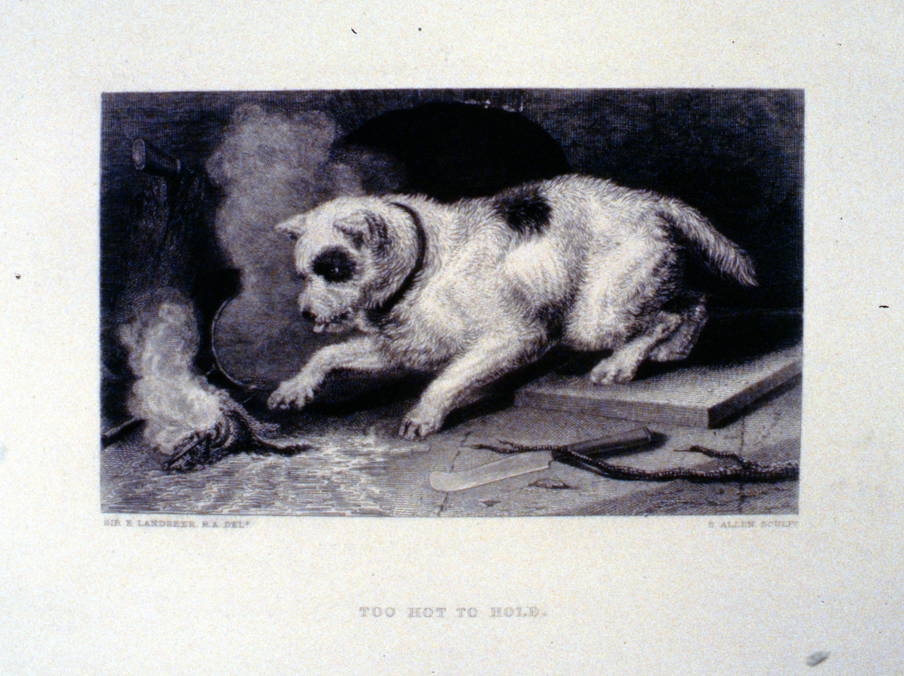 Too Hot to Hold , c. late 19th Century, S. Allen, steel engraving, 11.5 cm x 18.8 cm, 1996.08.30, gift of Yvonne Adams