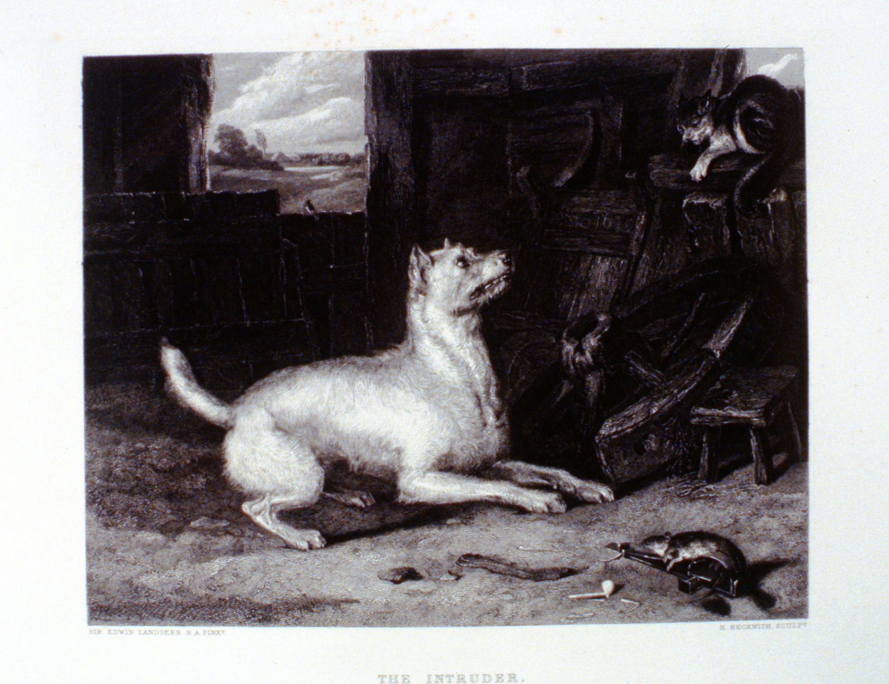 The Intruder , c. late 19th Century, H. Beckwith, steel engraving, 17.8 cm x 22.5 cm, 1996.08.38, gift of Yvonne Adams