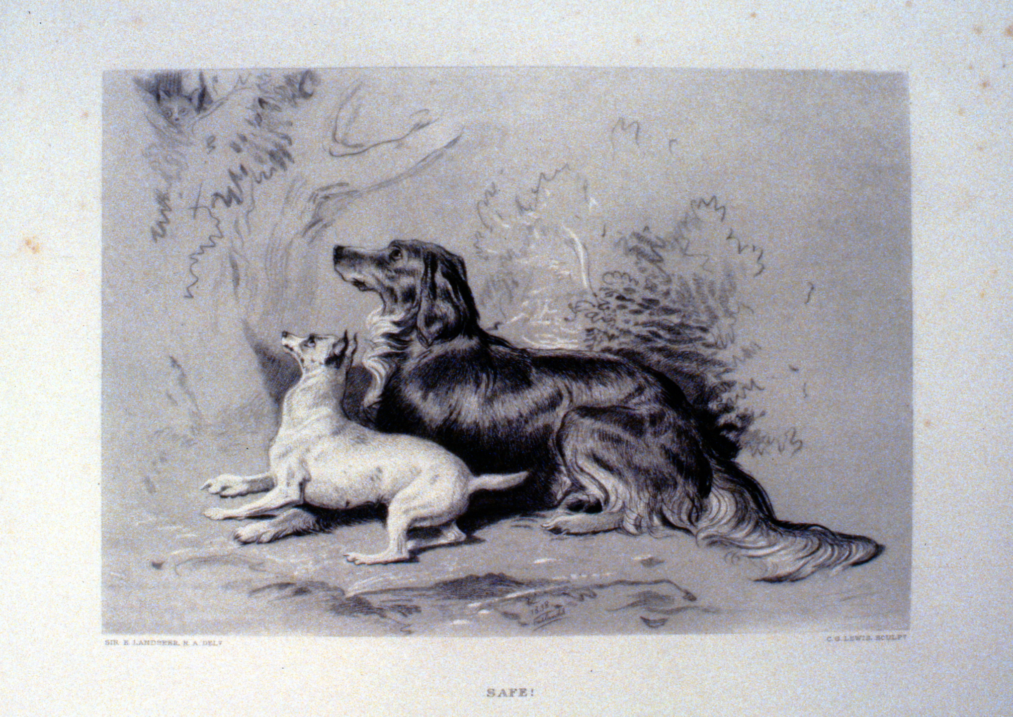 Safe! , c. late 19th Century, Charles G. Lewis, steel engraving, 17.3 cm x 25 cm, 1996.08.43, gift of Yvonne Adams