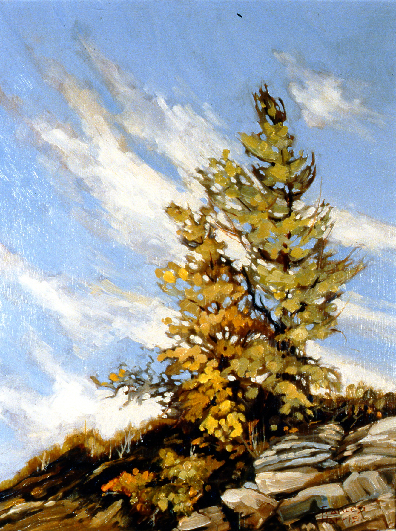 September Sky, 1980, Frances Harris, oil on board, 44 1/2 cm x 34 cm, 2002.01.02, gift of Harold Cairns