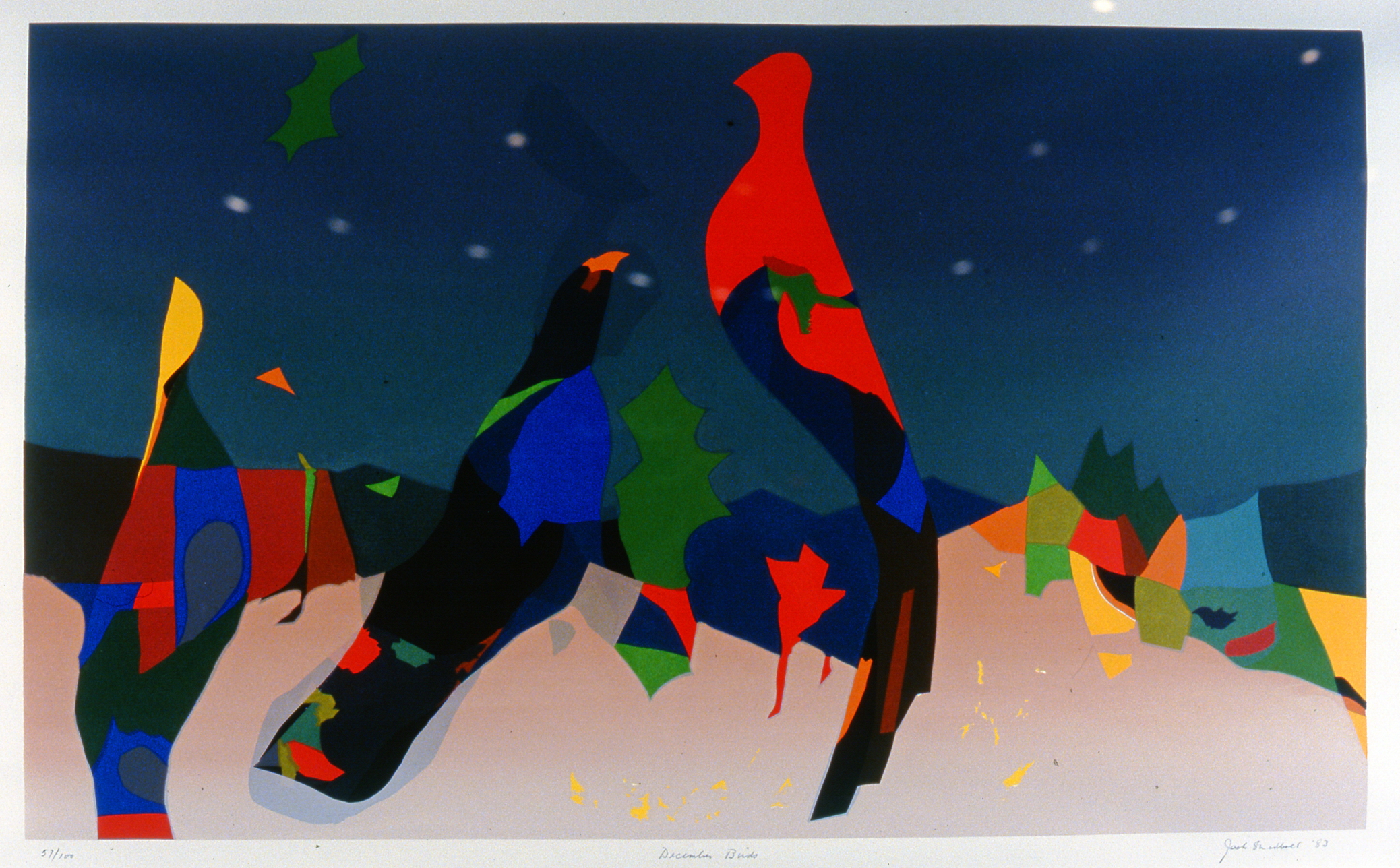 "December Birds,  1983, Jack Shadbolt, serigraph, edition 57/100, 18"" x 29 3/4"",  2003.06.05, gift of Mrs. Rosita Tovell"