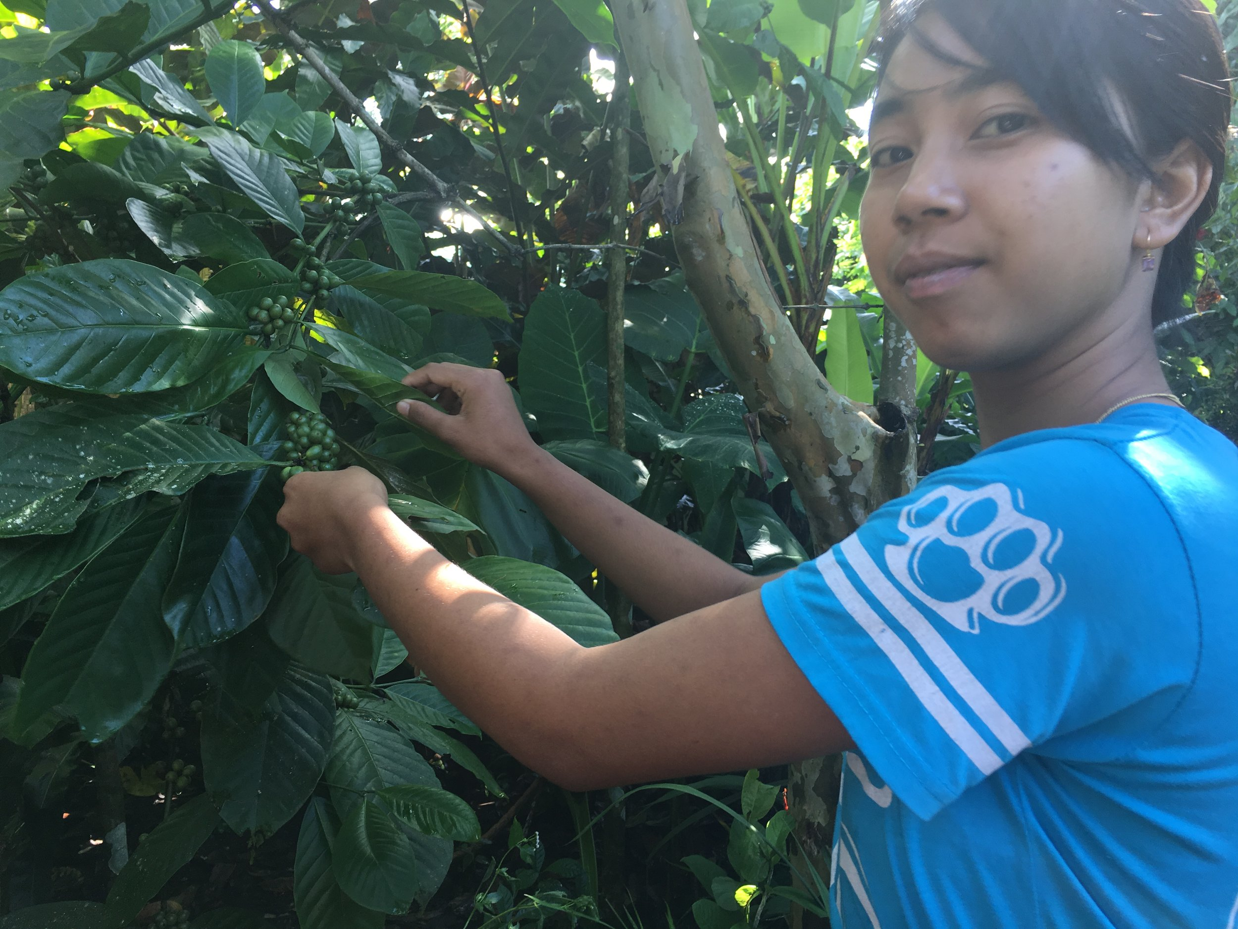 Reesa Teaching About Coffee Plants