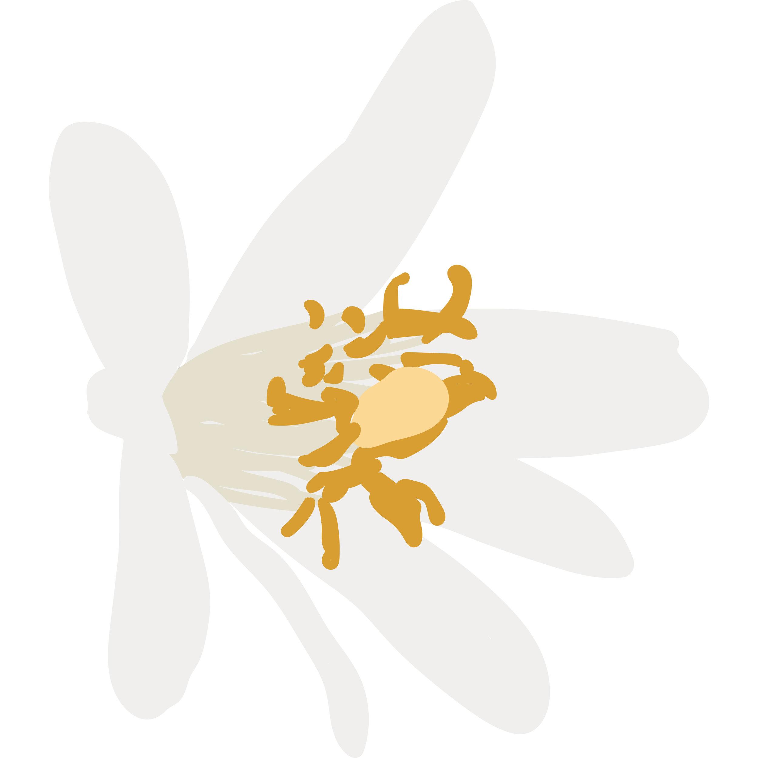 floral-oriental-01.jpg