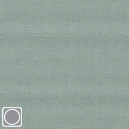 Colour 3599