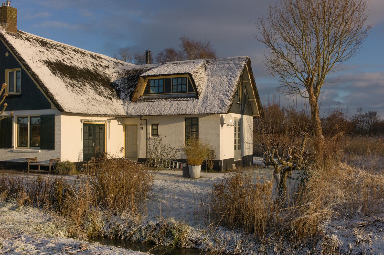 winter-1040780.jpg