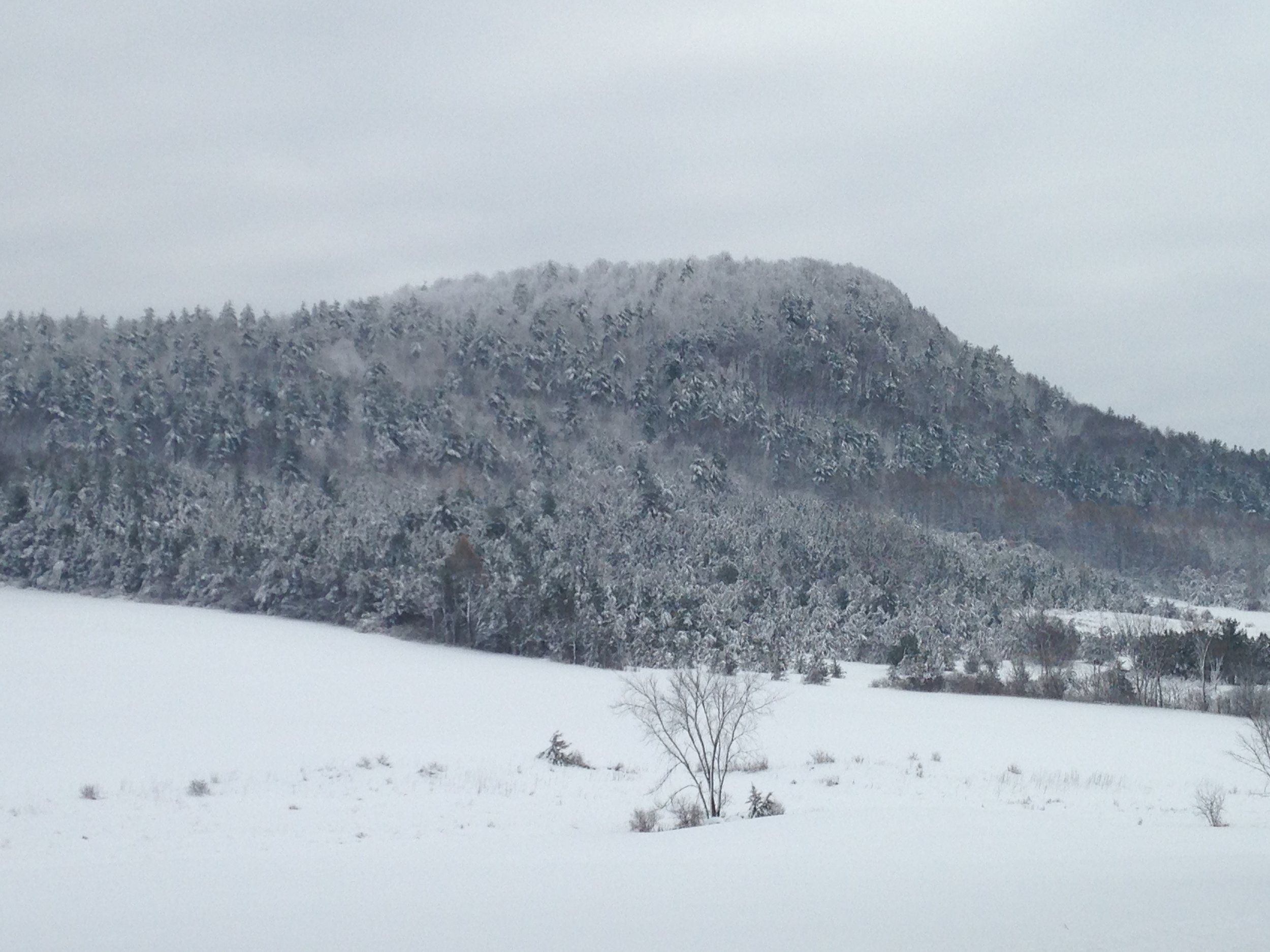 987' Mt. Philo from the north