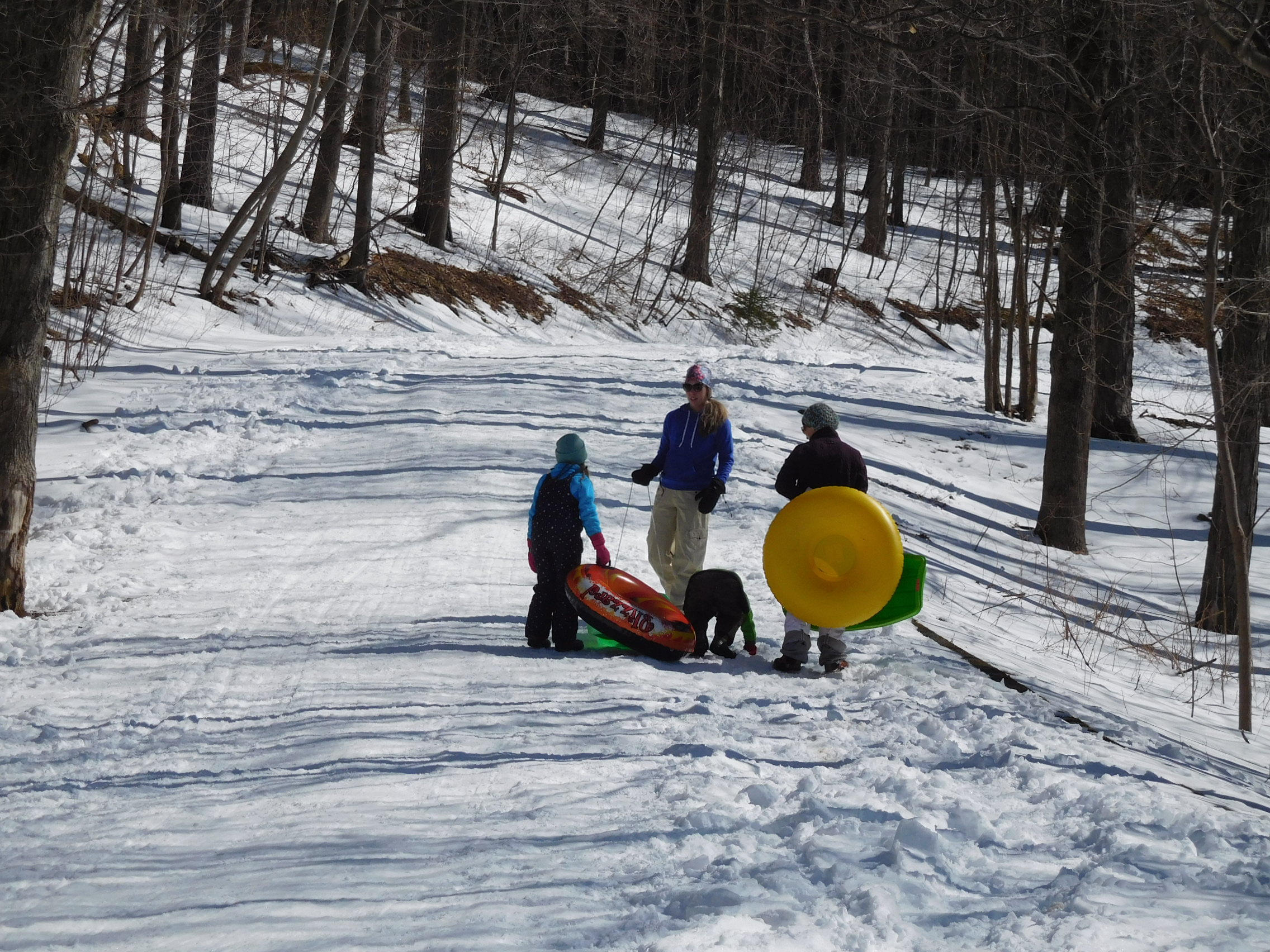 With a beginner slope at the bottom, a trip to Mt. Philo is family fun